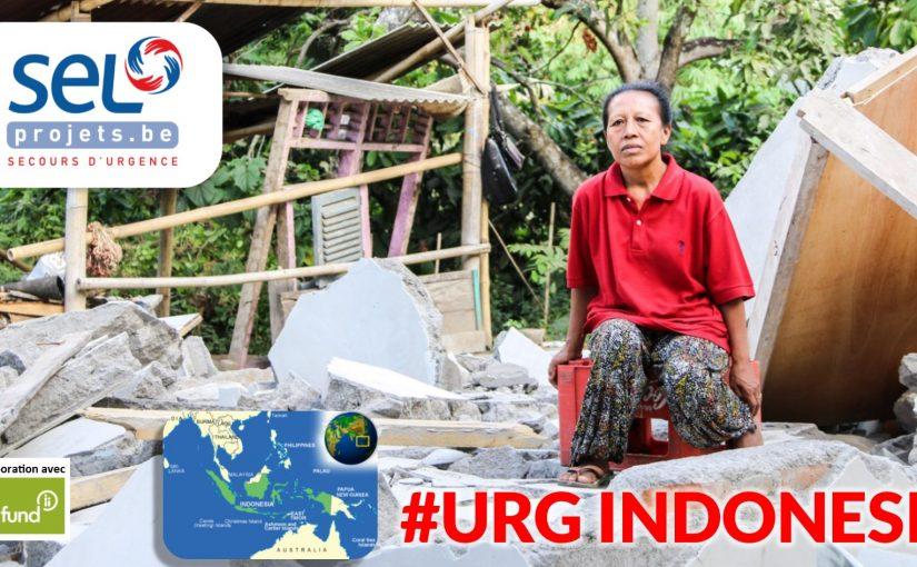 Appel d'urgence pour répondre au séisme en Indonésie
